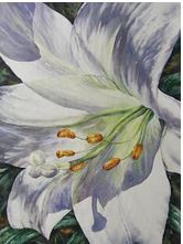"This framed work of art called ""Easter Lily"" by Cindy Barratt was won by lung health supporter Joan Boxma in Three Hills, Alta."
